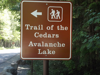 Glacier-National-Park-Trail-of-the-Cedars-Avalanche-Lake