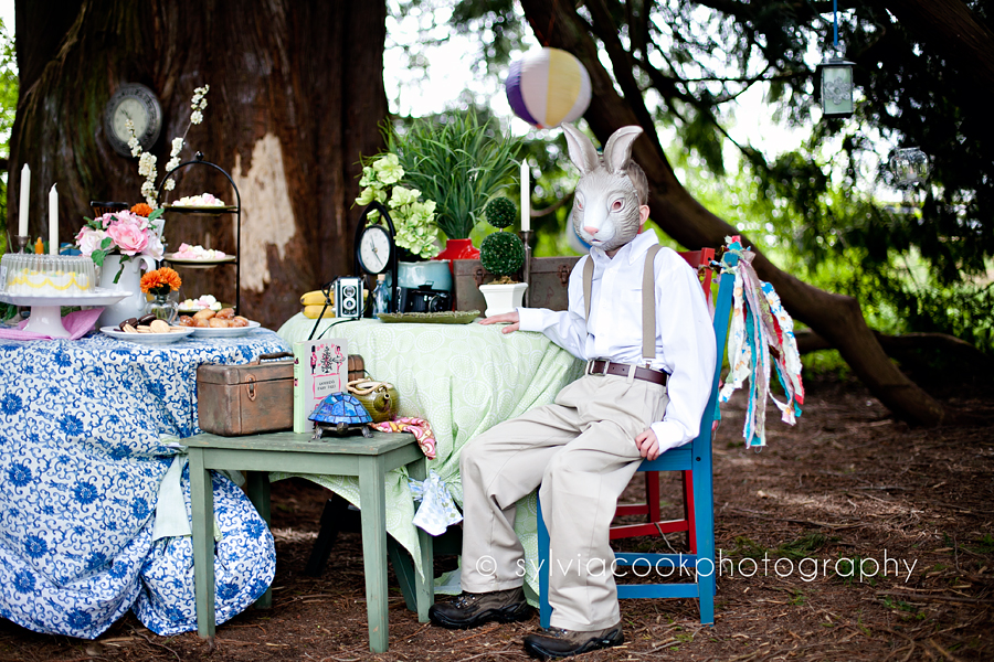Mad hatter tea party- Seattle children's photographer