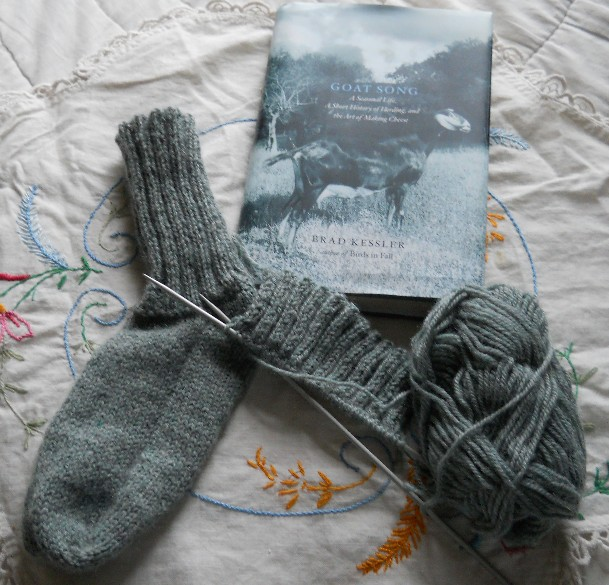 Knitting Pattern Reading Socks : Plain and Joyful Living: Knitting Socks and Reading about ...