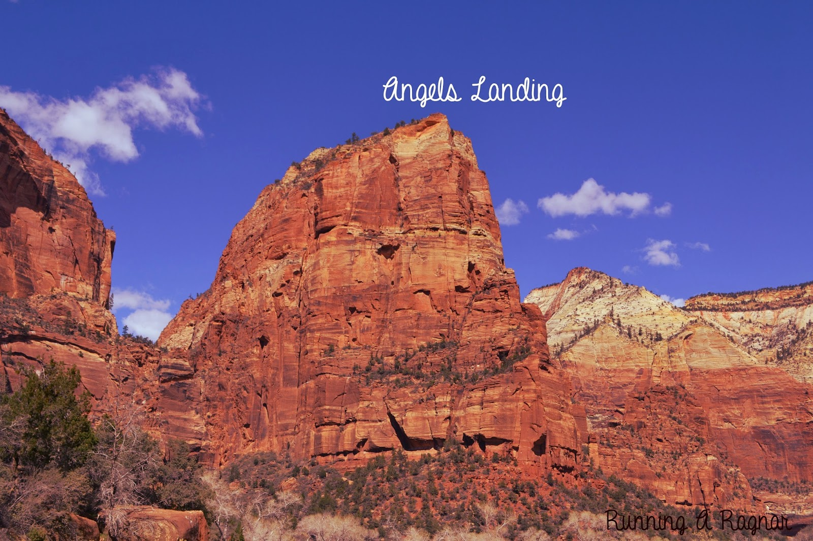 Katie Wanders Angels Landing Trail Zion National Park
