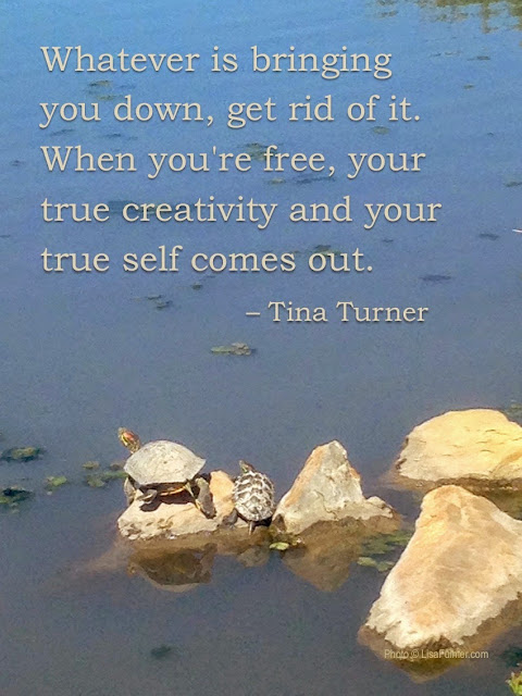 creativity quote by tina turner photo by lisa fulmer