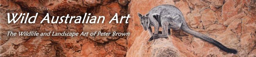 Wild Australian Art