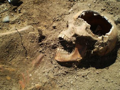 Swedish workers dig up 400-year-old soldier
