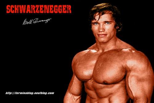 Arnold Terminator 3 Body