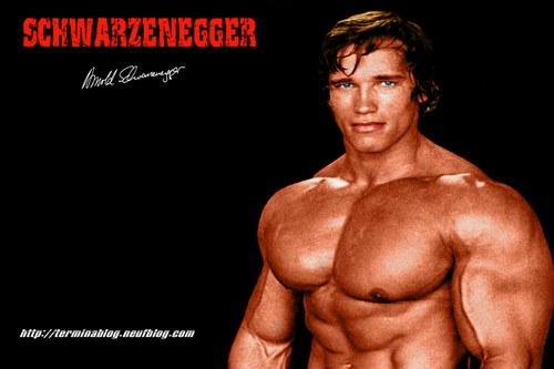 arnold schwarzenegger bodybuilding back. Free Download Bodybuilding