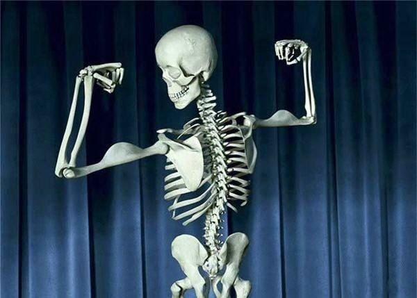 Colágeno de vital importancia en la formación de los tejidos de los Huesoss