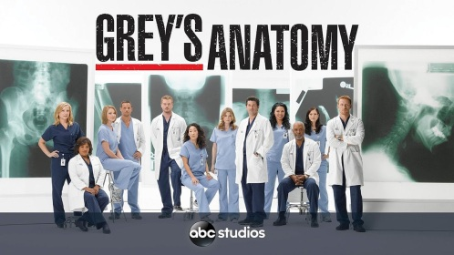 Grey's Anatomy 13ª Temporada