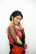 Nidhi Natuiyal Glamorous Photos in Saree-thumbnail-2