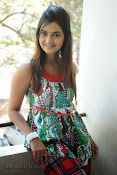 Neha deshpande Photos at Dil Diwana press meet-thumbnail-17