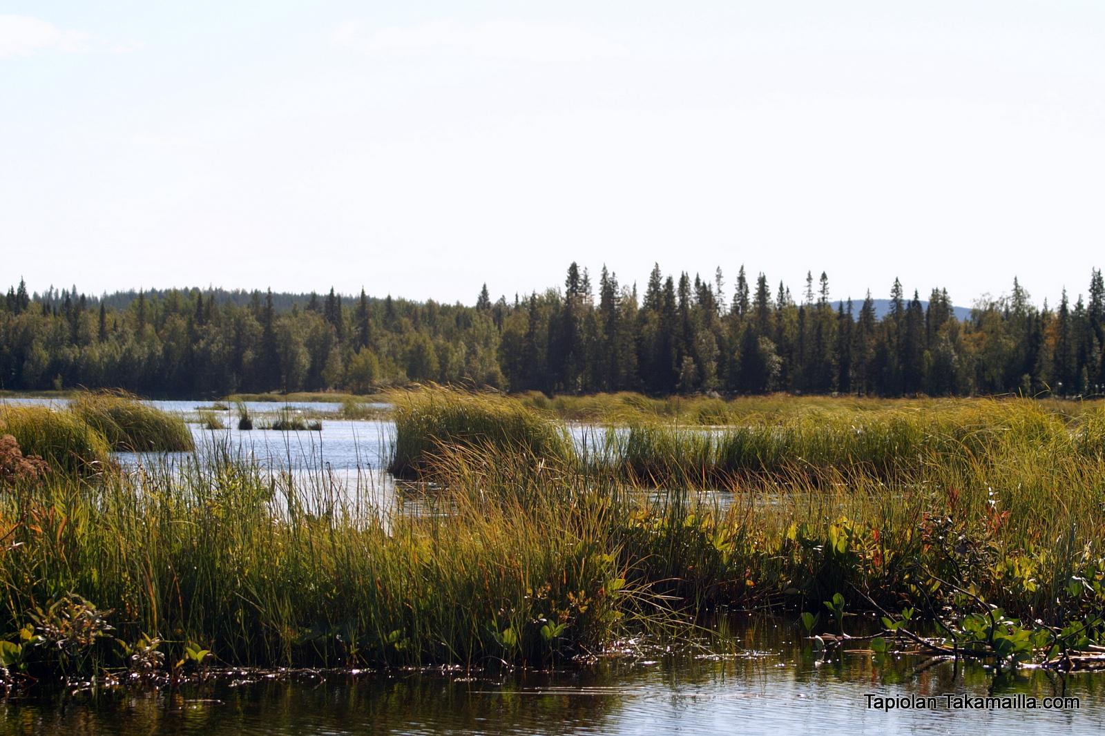 järvimaisemaa lapista
