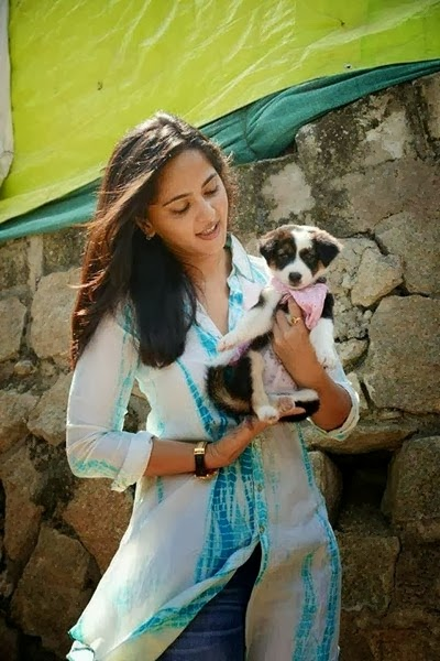 Anushka Shetty Bollywood Actress Images With Dog