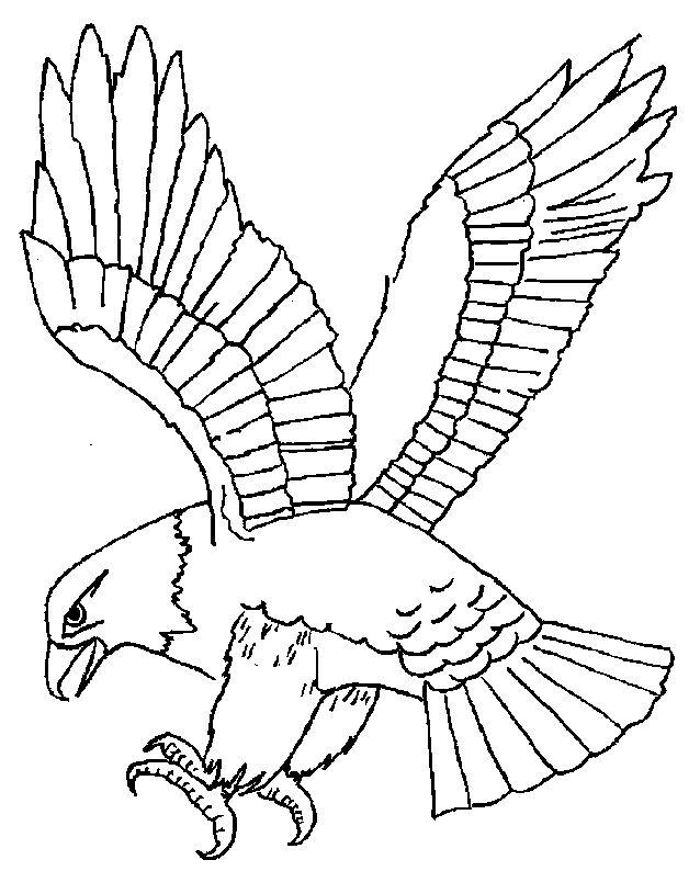 Раскраски с животными птицы