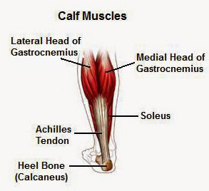 Calf Muscle Pain Causes, Symptoms, Treatment