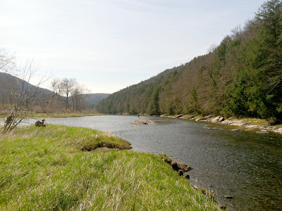 East Branch of the Delaware river, NY