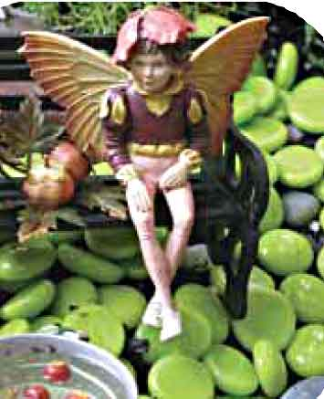 Jim Longs Garden Fairy Gardens Garden Fairies