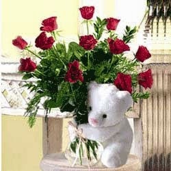 Rose Flowers and Big Teddy Gifts and price