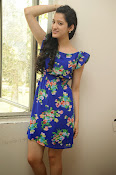 Richa Panai Latest Glam pics in Blue-thumbnail-11