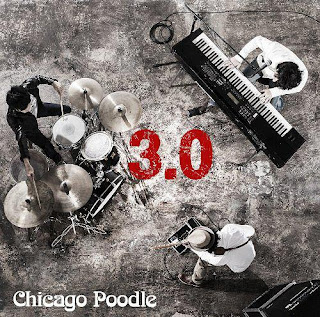 CHICAGO POODLE - 3.0