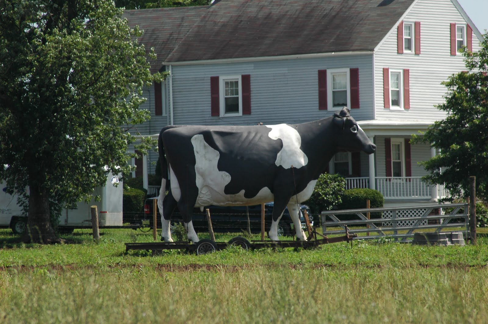 Giant cow in New Jersey