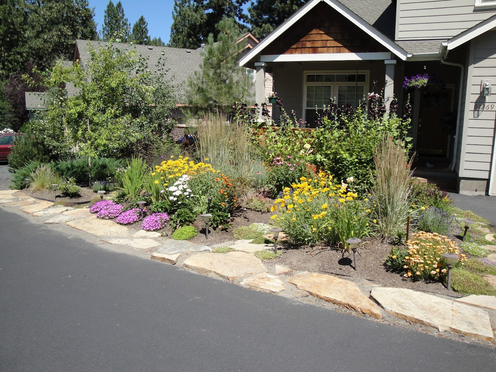 Carlseng designs front yards and sidewalk strips for Flower ideas for front yard