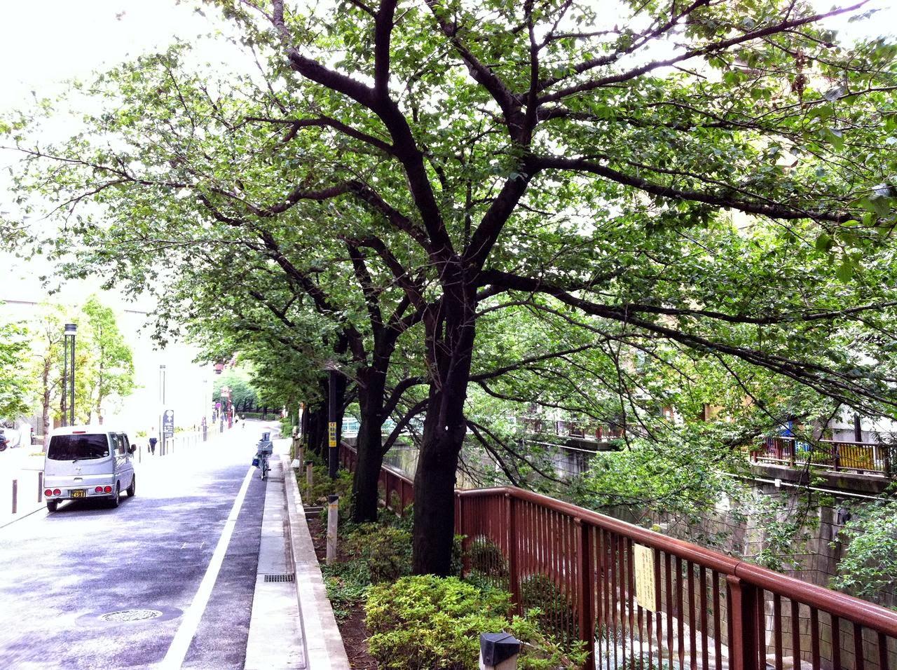 東京都目黒区中目黒3丁目11 - Yahoo!地図