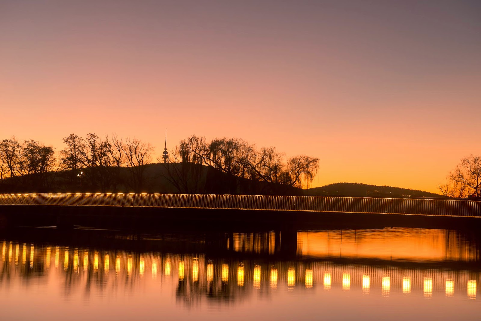 Canberra Travis Longmore Photography
