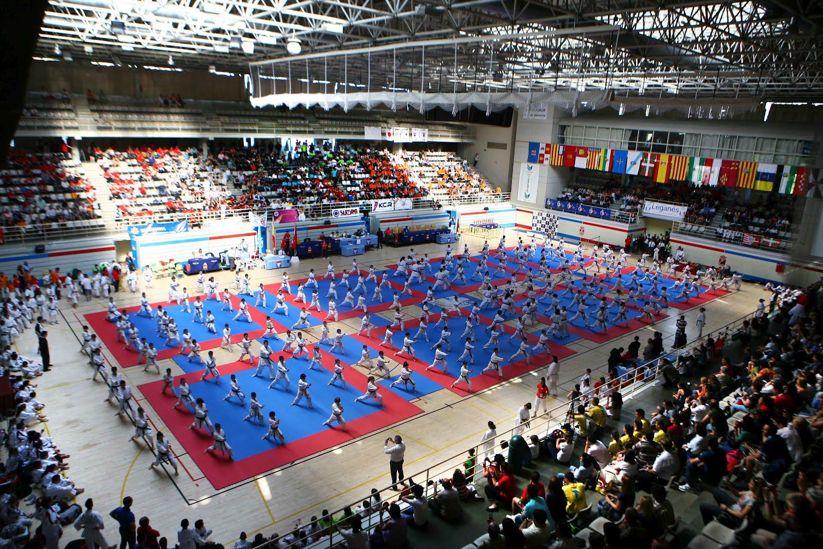 Gran xito de participaci n y de p blico en el campeonato - Pabellon de deportes de madrid ...