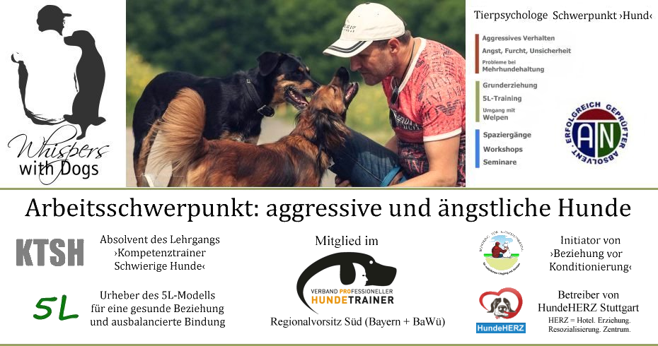 Hundeschule Whispers with Dogs in Stuttgart Süd | Trainer ›Schwierige Hunde‹