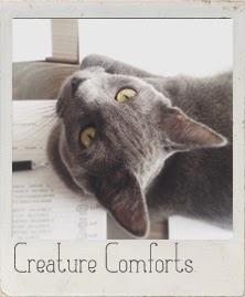 http://creaturecomfortsblog.com/