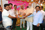 Krishnamma Kalipindi Iddarini movie launch-thumbnail-13