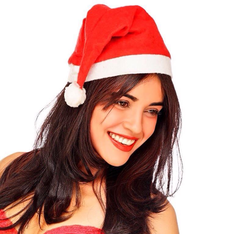 Brc Holiday Celebration Photos 2015: Tollywood Celebrities Christmas Celebration Pics