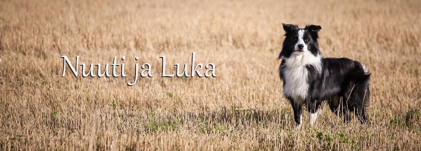 Nuuti ja Luka