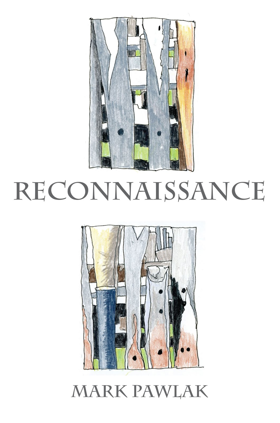 Reconnaissance: New & Selected Poems & Poetic Journals 2005-2015