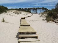 paisaje playa uruguay  entrada madera turismo