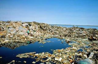 Great Pacific Garbage Patch, Pasifik Utara
