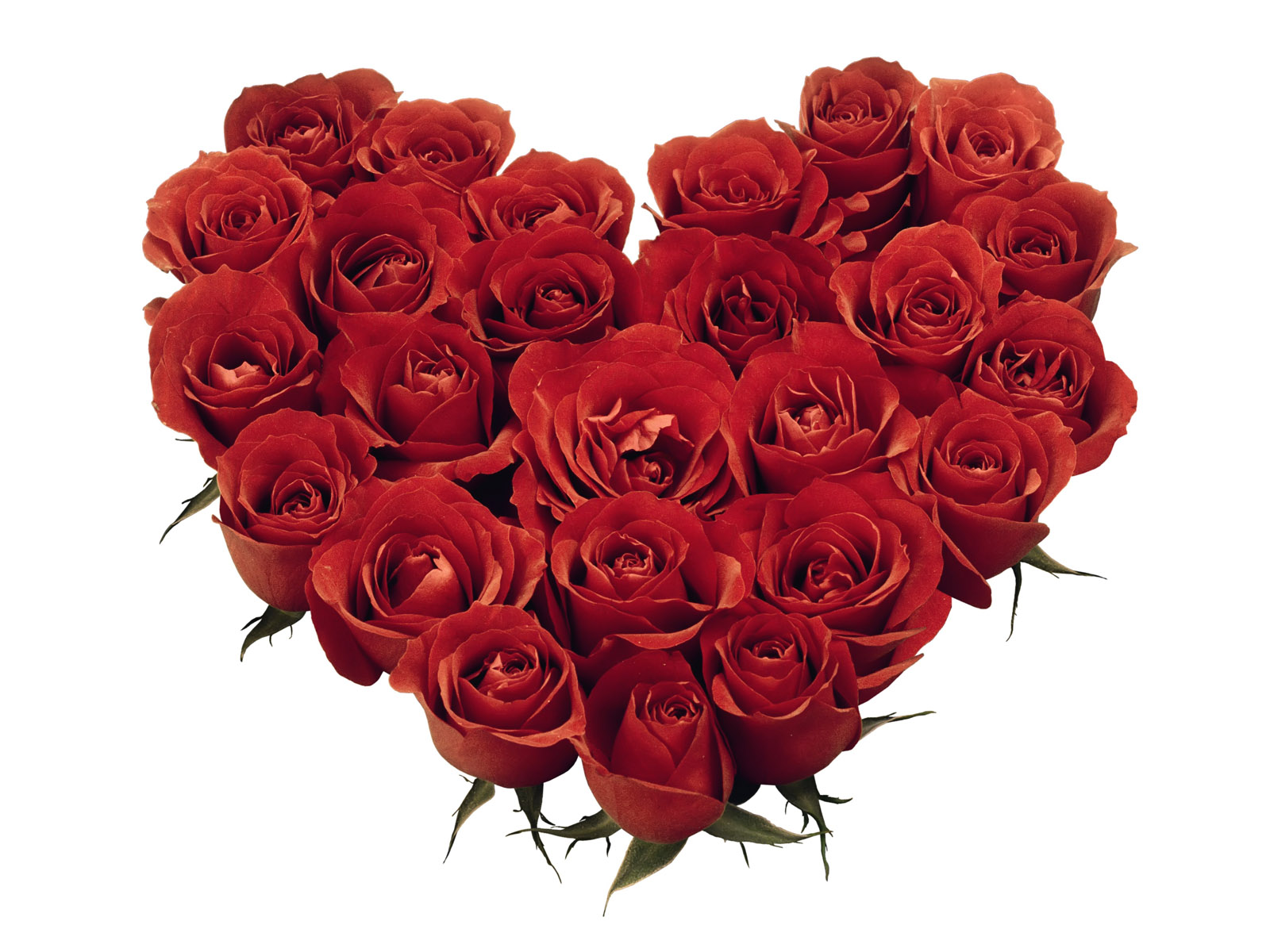 love heart shaped flowerflower - photo #28