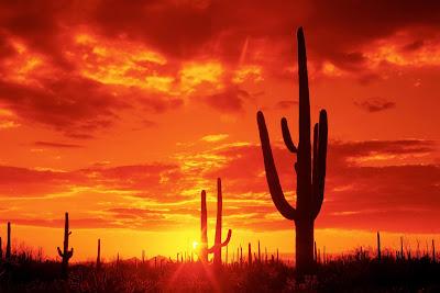 nature sunset wallpaper love for sunset