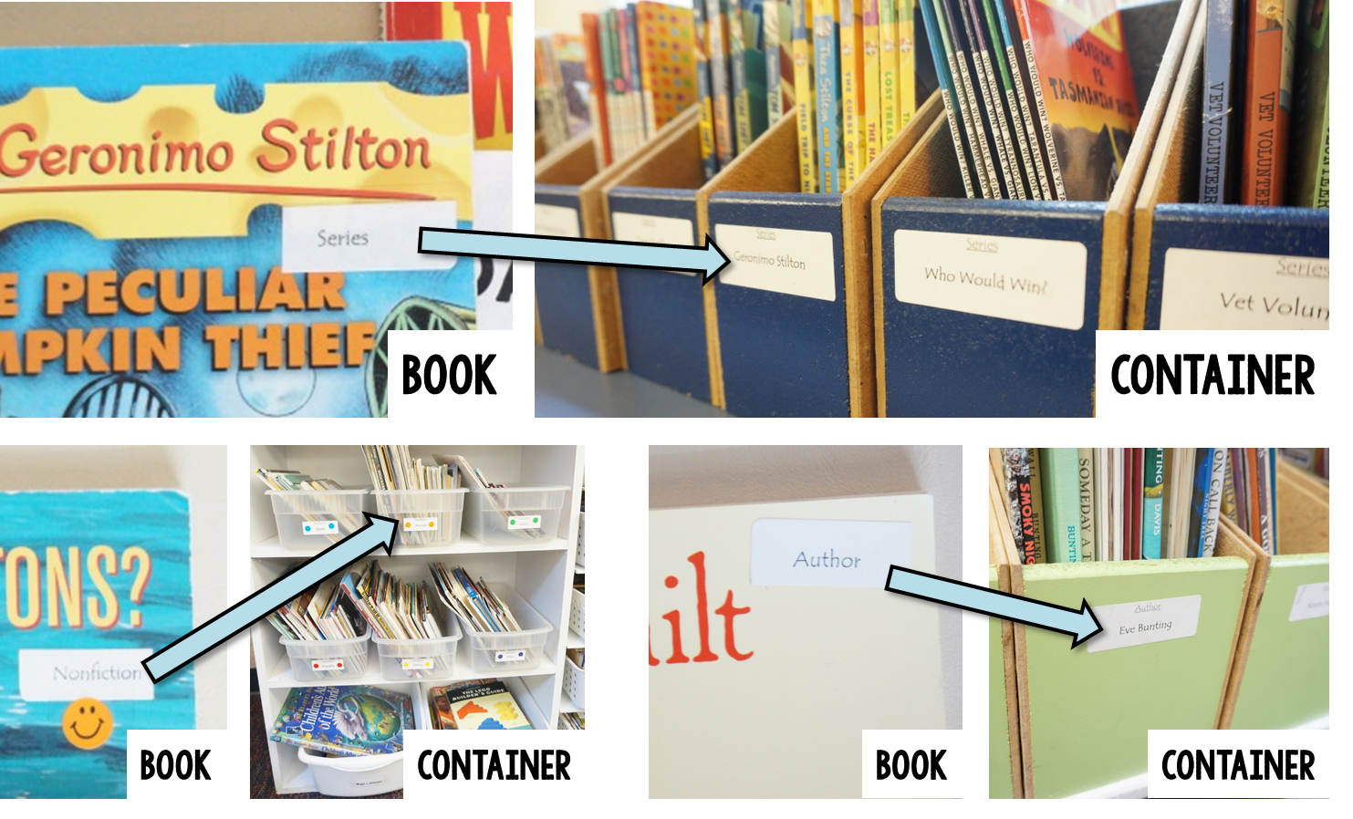 the thinker builder how i organize my classroom library part two
