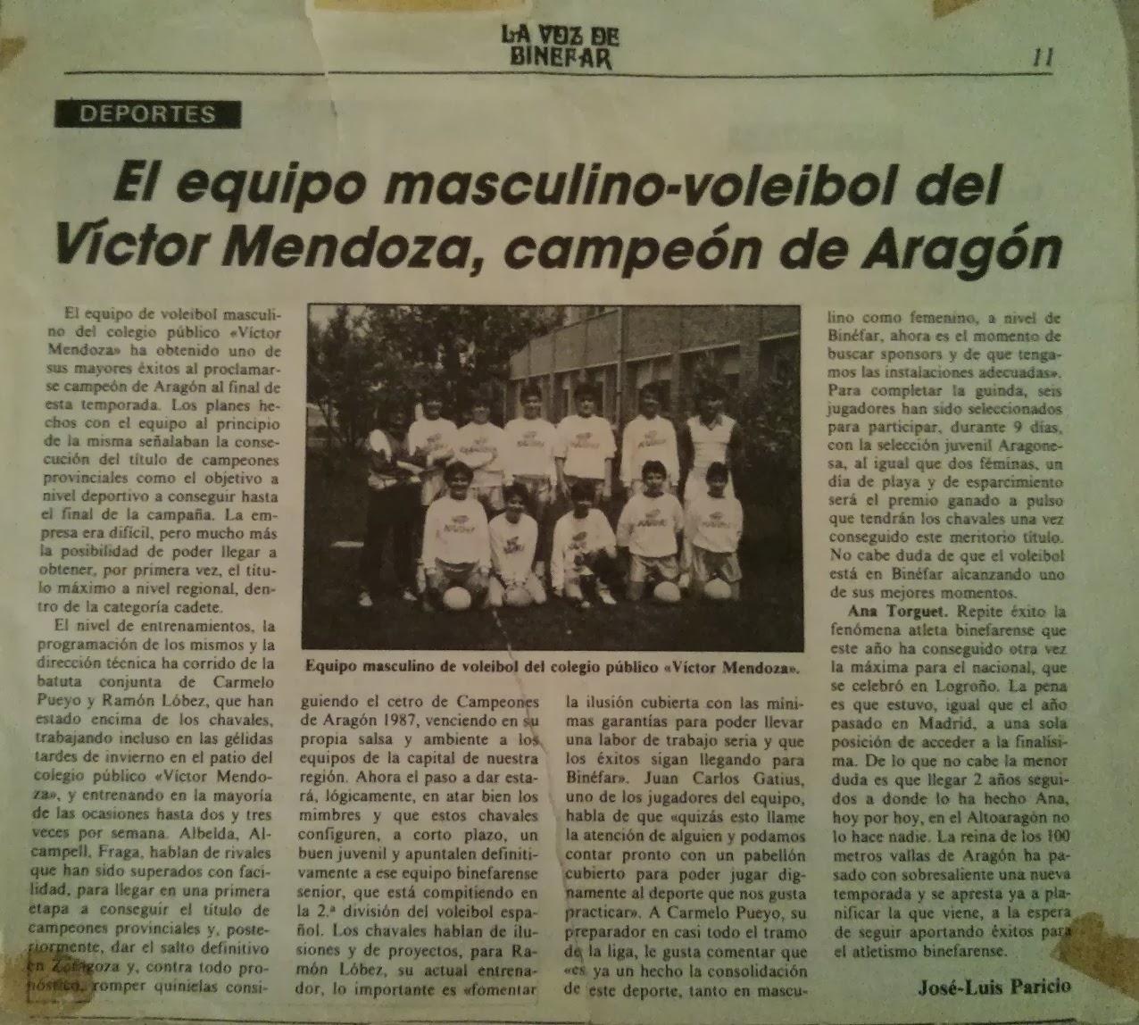 voleibol binefar