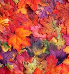 Autumn (Fall)