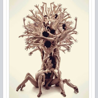 Foto. Vinte e dois bailarinos, homens com sunga e mulheres com duas peças, todos descalços, formam uma árvore de tronco grosso com raízes aéreas compostas pelas pernas flexionadas em ponte de três que estão sentados; os outros, em pé e bem unidos, equilibrando-se uns aos outros; formam o tronco, os braços abertos e as mãos espalmadas desenham a copa arredondada da árvore; um bailarino sustenta uma bailarina com o corpo em curva para cima, o cotovelo direito dele está apoiado no ombro esquerdo de outro bailarino que mantém o dorso inclinado à frente com os braços abertos na altura dos ombros. Na parte central do tronco em meio a mistura de cabeças, há outras duas bailarinas com os troncos retos e os braços abertos e ao alto.