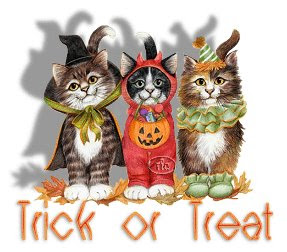 Cute Halloween cats