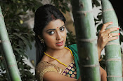 Shriya Saran latest Photos in saree-thumbnail-15