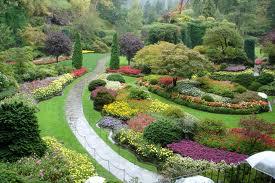 paisagem com árvores e flores de diversas cores