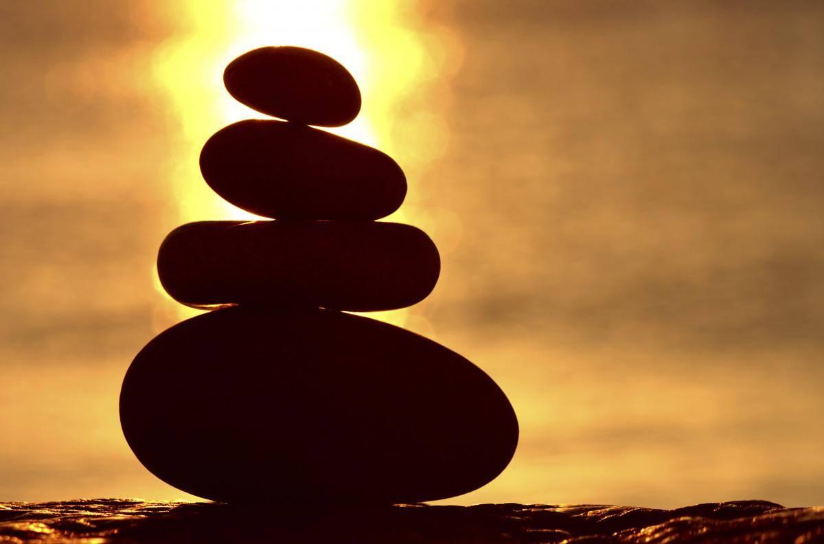 Cuerpo, Consciencia y Experiencia