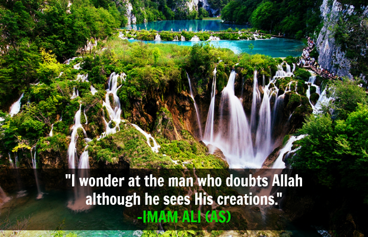 I wonder at the man who doubts Allah although he sees His creations.