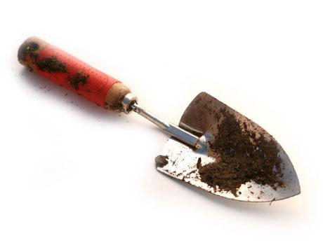 النصائح للزراعة المنزلية محدود potting-soil-shovel-7-lg.jpg