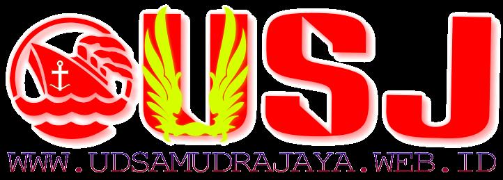 jual chain block surabaya chain block