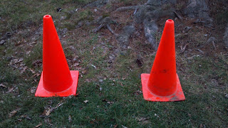 two orange traffic cones in the grass