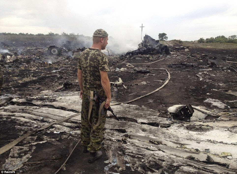 Malaysia Airlines MH17 Burnt